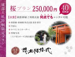 桜プラン 250,000円 40万円分 建部大社特別限定プラン 想い出結婚式